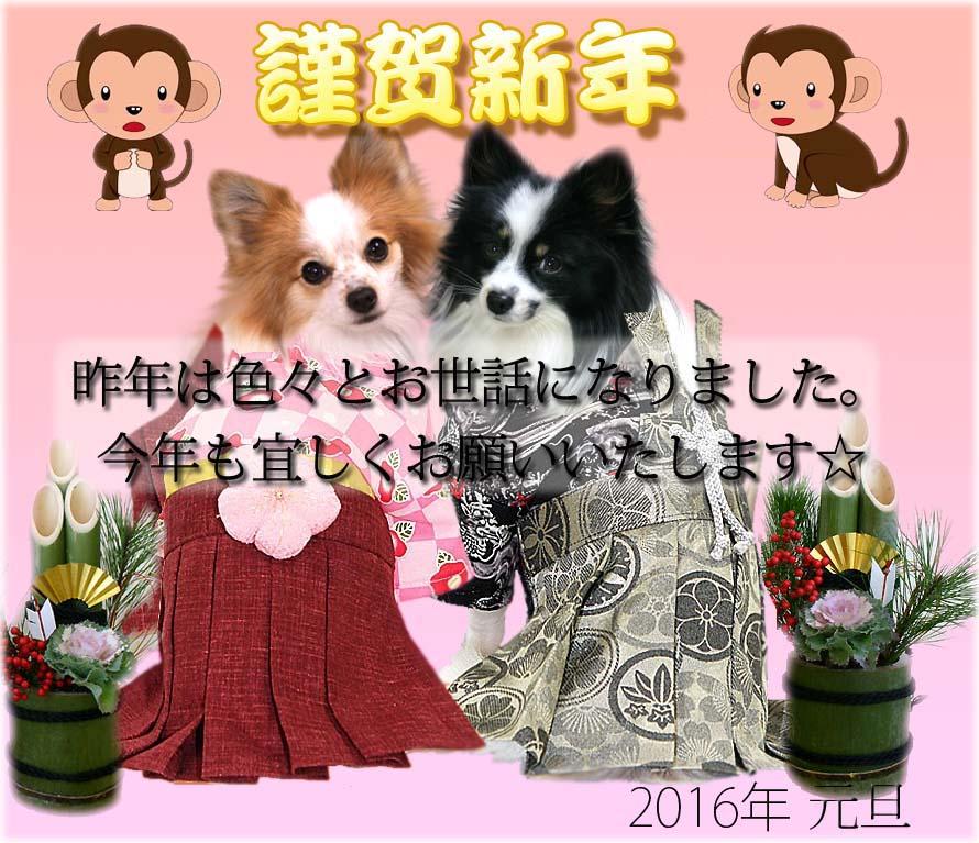 2016_01_01.jpg