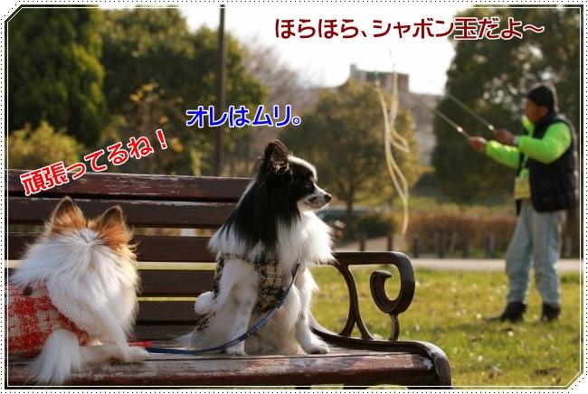 2IMG_4976.jpg
