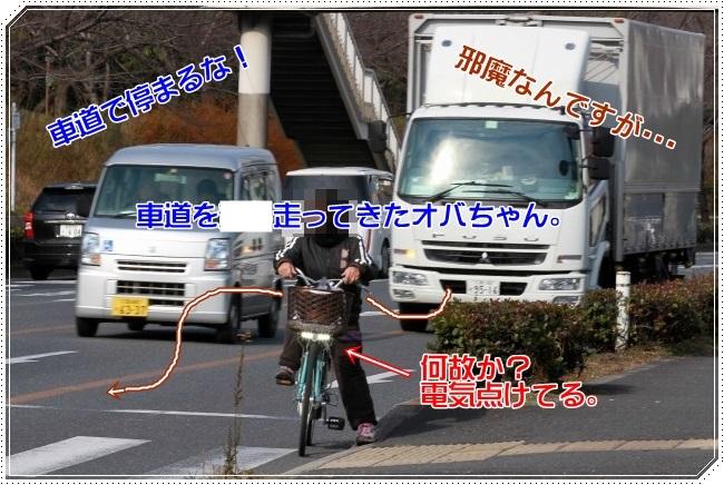 3IMG_5025.jpg