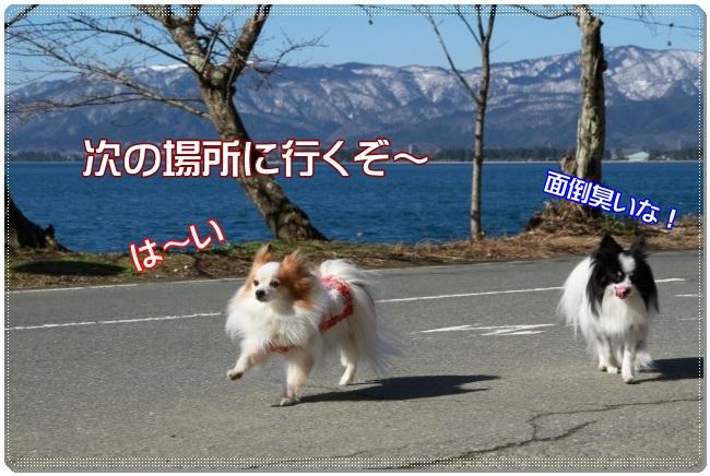 IMG_1053.jpg