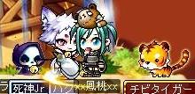 Maple160113_170130 (2)