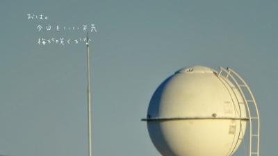 16126-a1.jpg