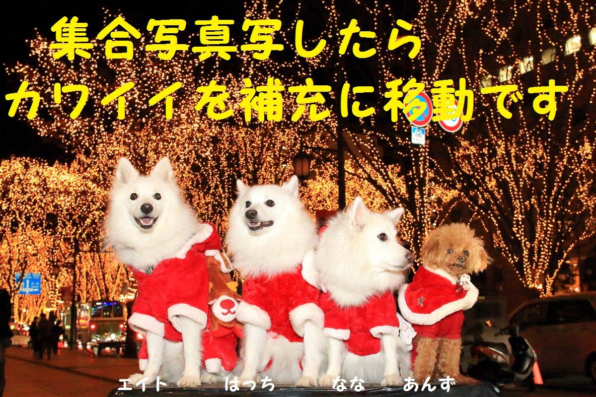 0_20151220092813aa8.jpg