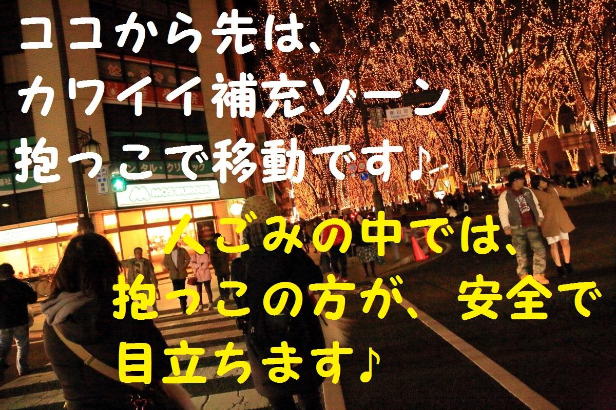 1_20151220092812989.jpg