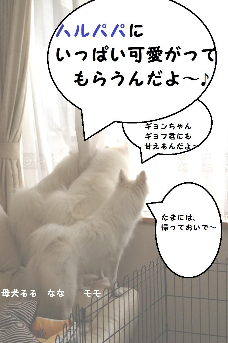 20150919_160043.jpg