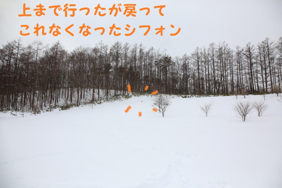 2K5A4023.jpg