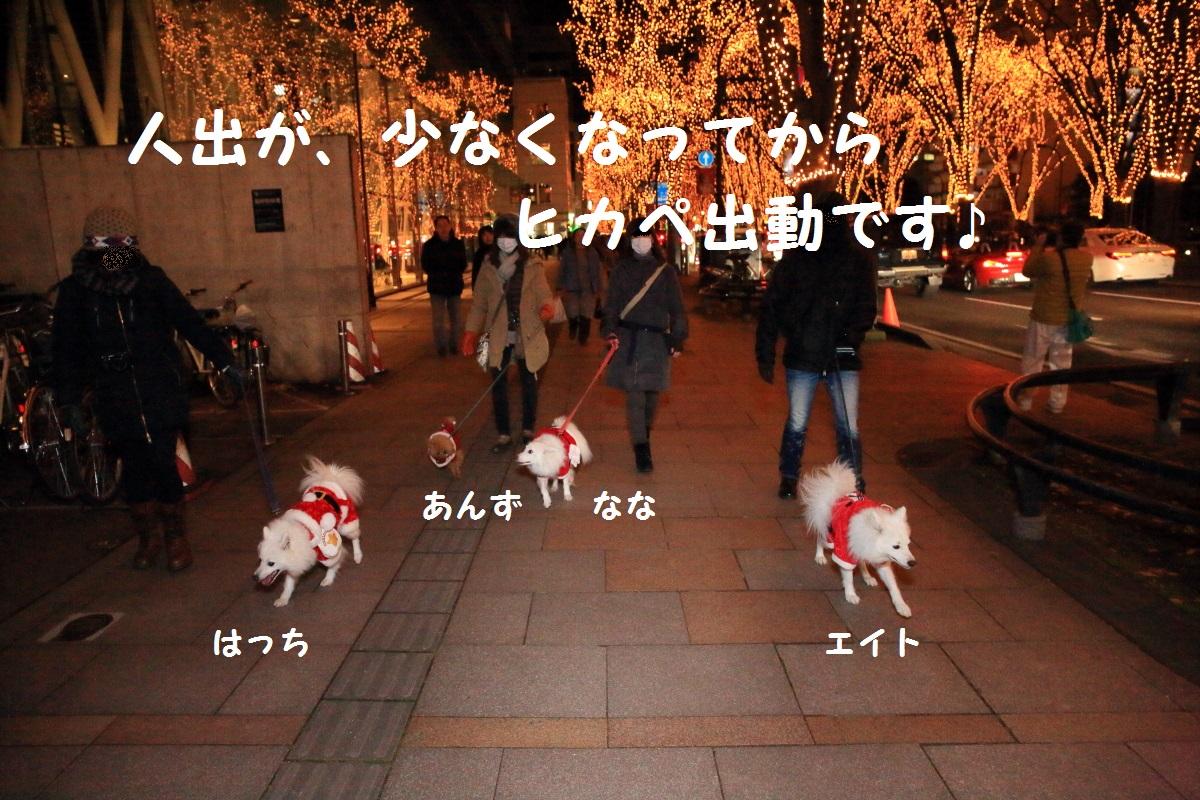2_20151218112958ab6.jpg