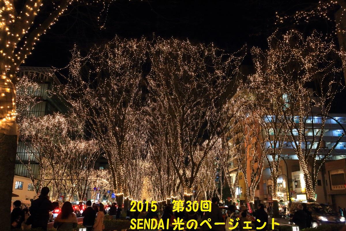 8_20151221012057617.jpg