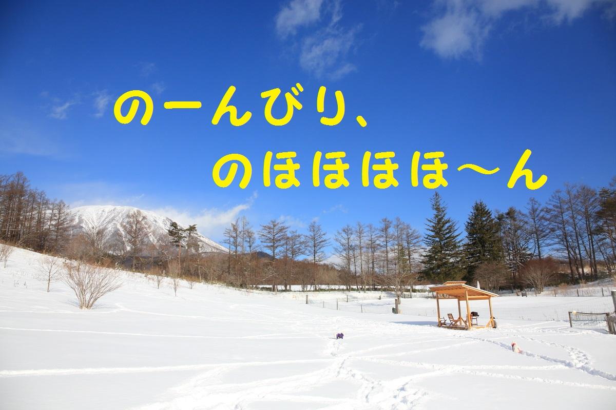 8_20160115160157e6b.jpg