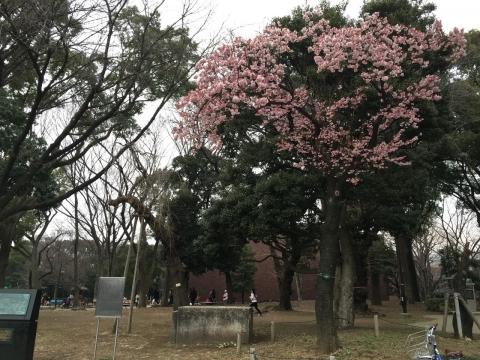 2016-02-06_15-49-23.jpg