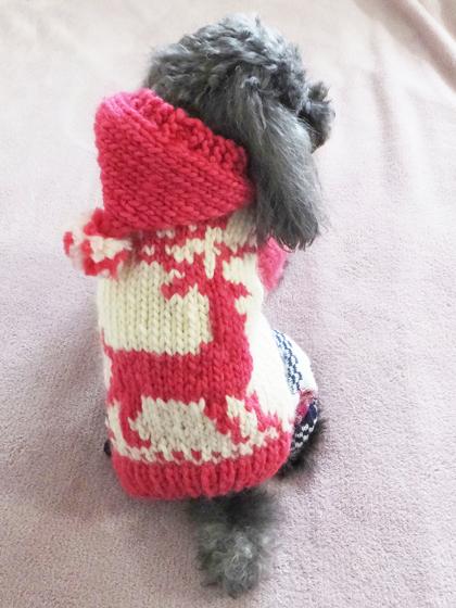 カウチセーター03