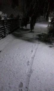 160118_所沢の雪