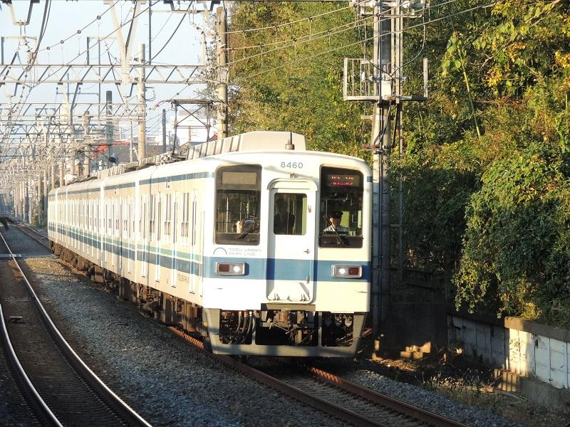 DSCN4253.jpg
