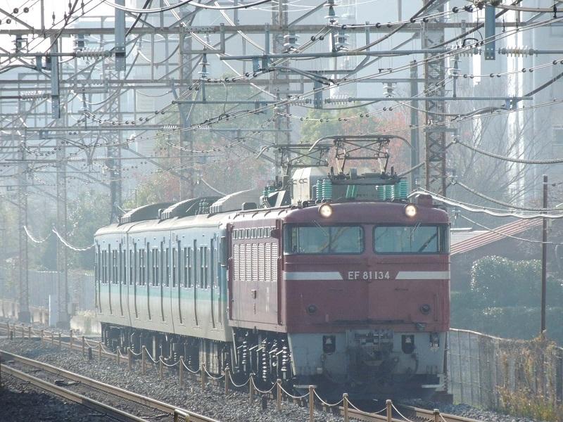 DSCN4980.jpg