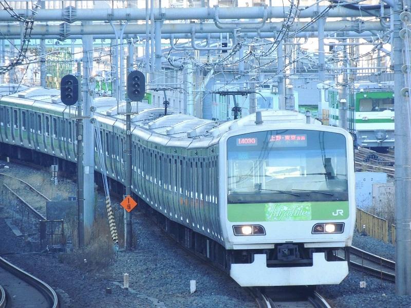 DSCN4994.jpg