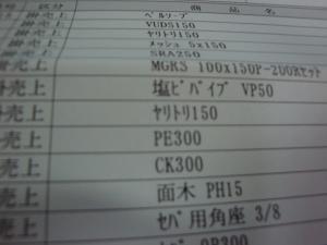 DSC06399.jpg