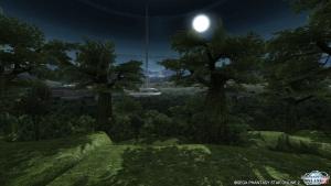 シーナリーパス・森林7