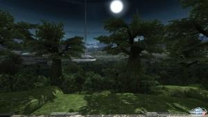 シーナリーパス・森林8