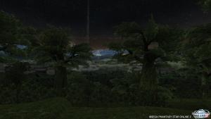 シーナリーパス・森林9