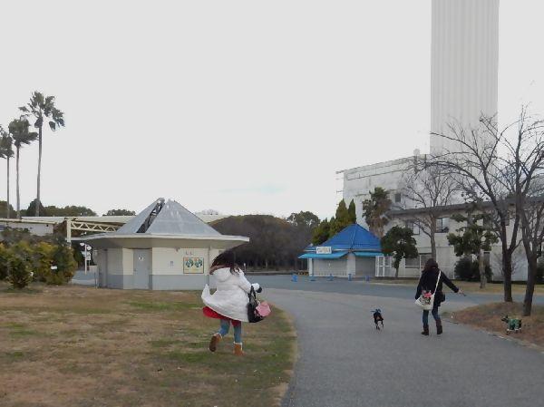 20160121 (17)