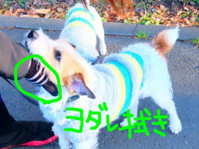 snap_5345pma290_201512310355.jpg