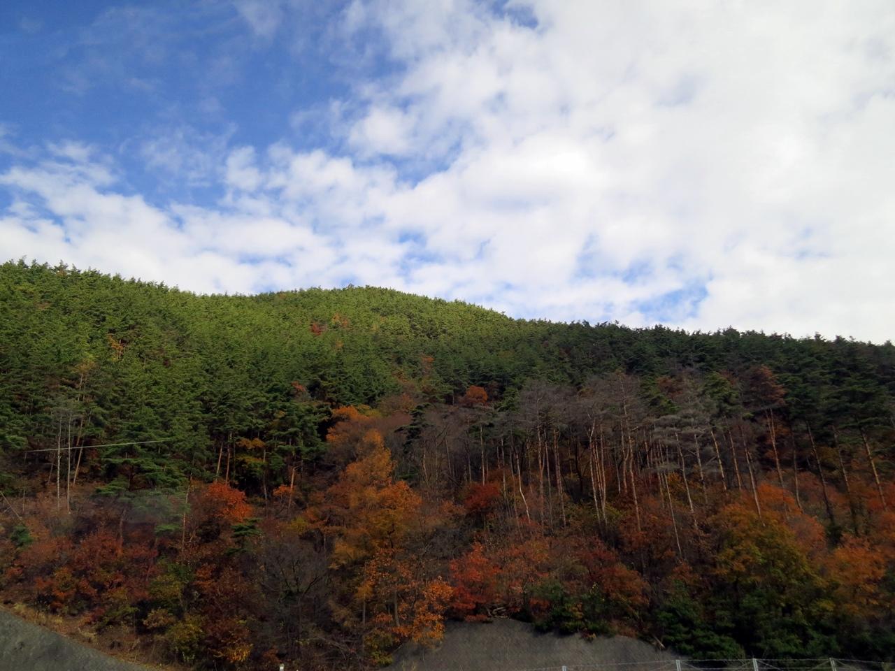 151120新宿-富山-08