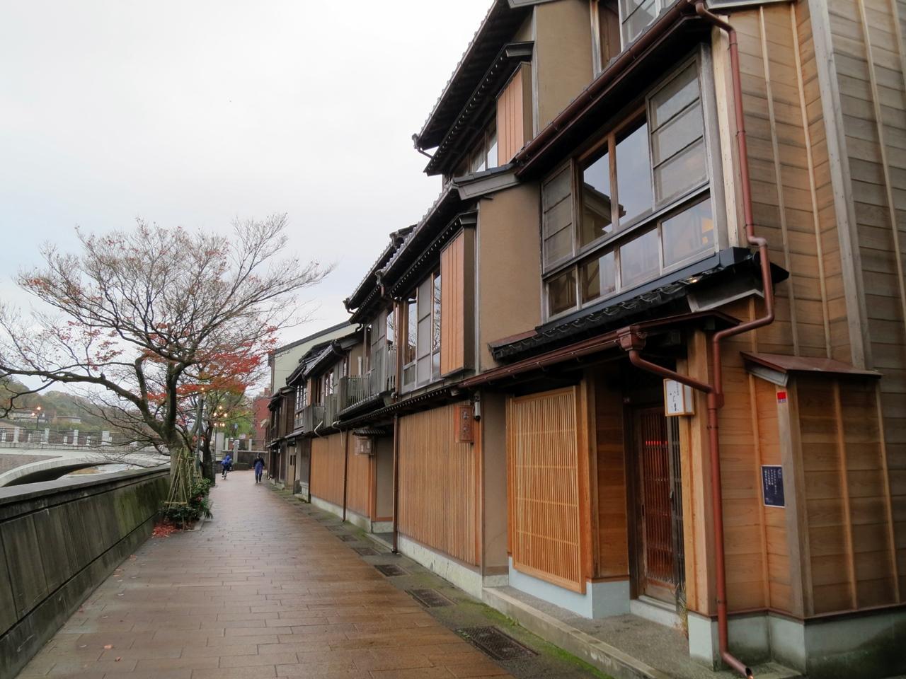 151124浅野川-11