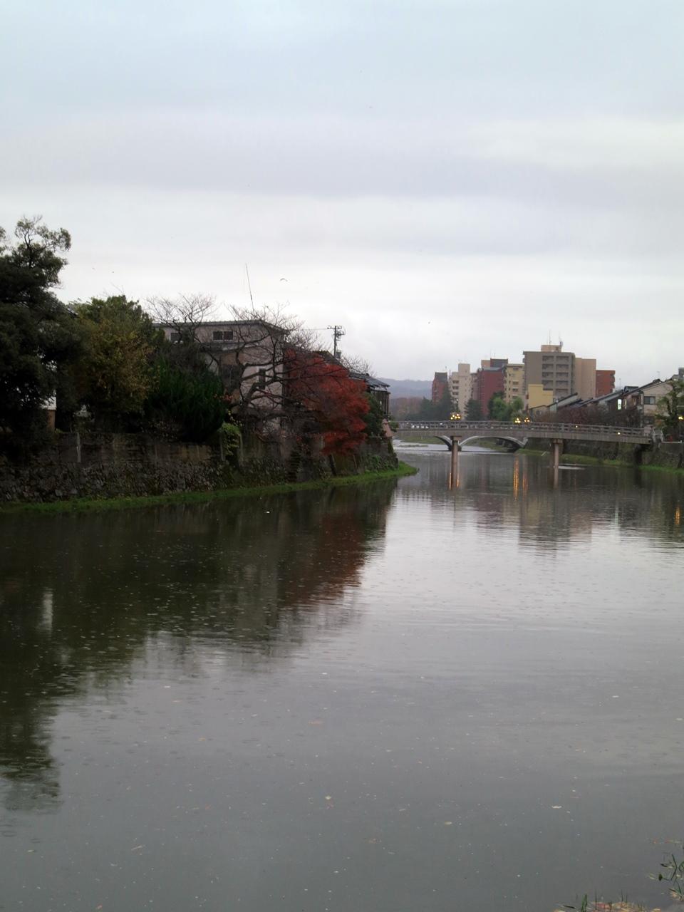 151124浅野川-12