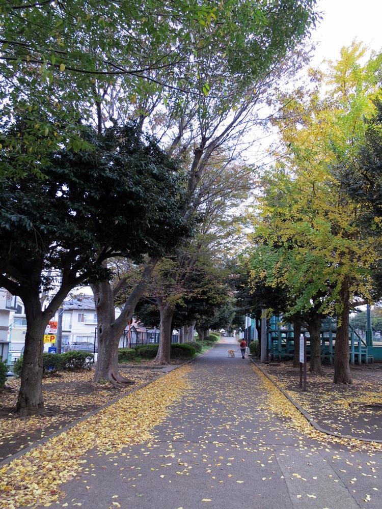 151125金沢から夜行バス-09