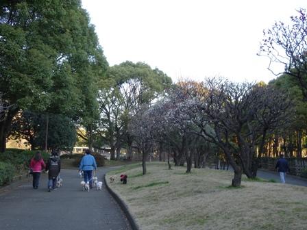 2016-2 公園