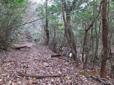 谷コース2