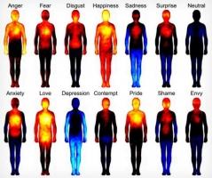 『 感情と 身体の相関図 』