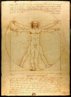 ダビンチ人体図
