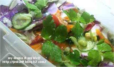 2-6 紫白菜
