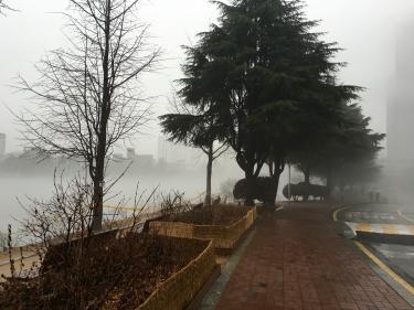 こんな霧のキャンパス、初めてでしたw
