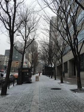 2月の突然の雪。