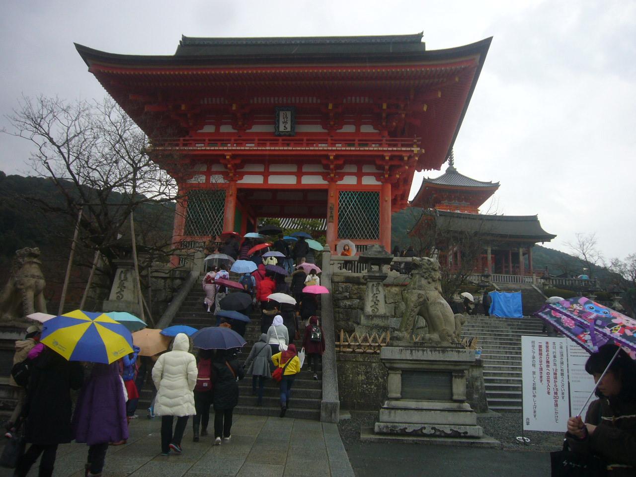 雨中清水寺へ H27.12.15
