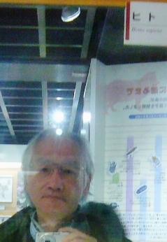 ヒトの展示 2