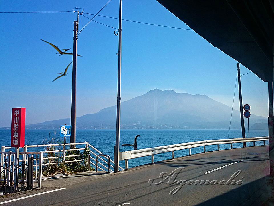 店内から桜島が見えます。