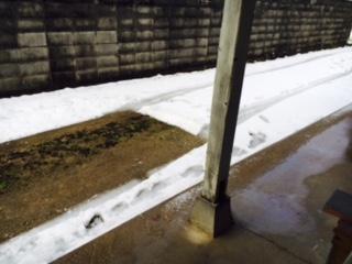 H28年1月20日積雪