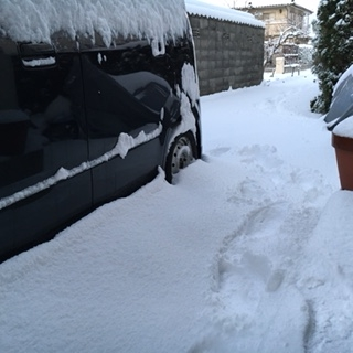 H28年1月25日の積雪2
