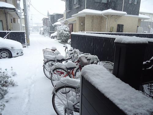 1601yuki001.jpg