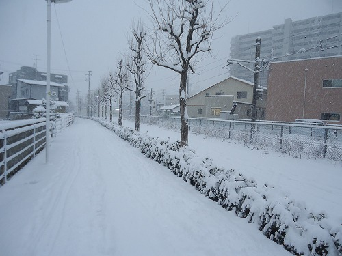 1601yuki004.jpg
