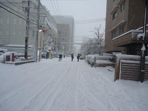 1601yuki005.jpg