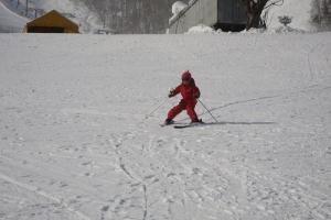 きゅうスキー