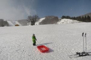 日曜日はスキー
