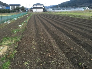 28年農園準備2