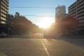 逆光の大通公園