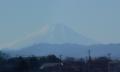 水上公園通りから見る富士山②