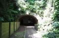 愛のトンネル?